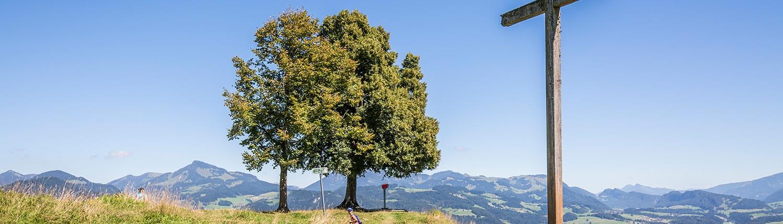 Gipfelkreuz Hocheck in Oberaudorf Bayern